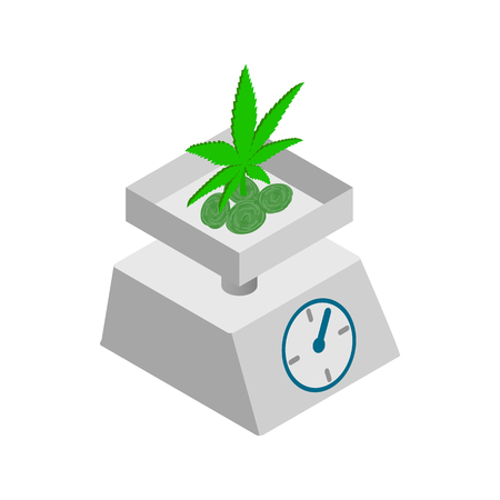 grams: Medicinal marijuana on a scale icon in isometric 3d style on a white background