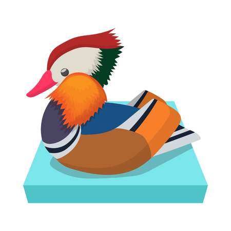 cartoon duck: Mandarin duck icon on blue lake isolated on white background in cartoon style