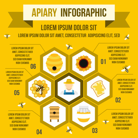 apiculture: Apiary infographic in flat style for any design
