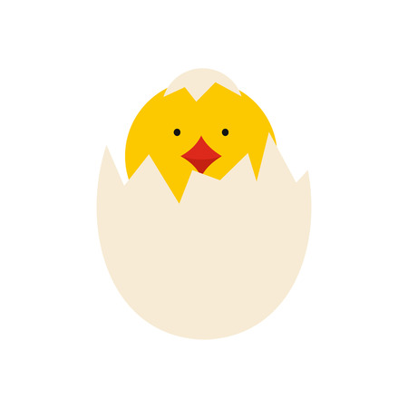 chick: Yellow newborn chicken hatched from the egg icon in flat style isolated on white background