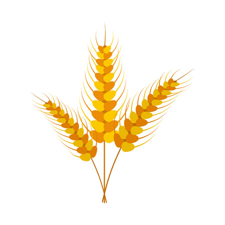 stalks: Three stalks of ripe barley icon in flat style isolated on white background