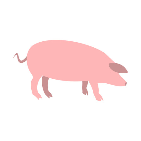 head shot: Pig icon in flat style isolated on white background
