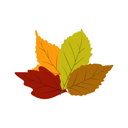 chokeberry: Autumn leaves icon in flat style isolated on white background Illustration