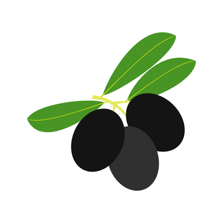 mediterranean diet: Olives on branch with leaves icon in flat style isolated on white background Illustration