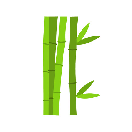 fengshui: Green bamboo stems icon in flat style isolated on white background
