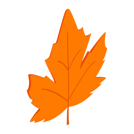 maple leaf icon: Maple leaf icon in isometric 3d style on a white background