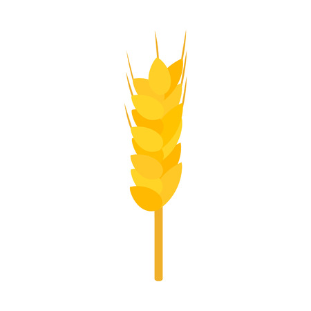 husks: Wheat icon in isometric 3d style on a white background