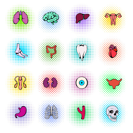 liver cells: Organs Icons Set in pop art style isolated on white background