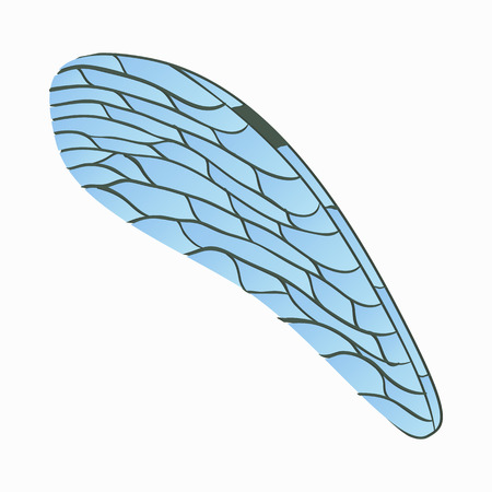 dragonfly wing: Dragonfly wing icon in cartoon style isolated on white background