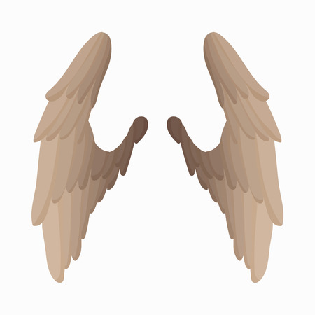 wings bird: Pair of bird wings icon in cartoon style isolated on white background