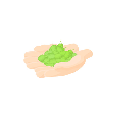 ferment: Hop cones in hands icon in cartoon style on a white background