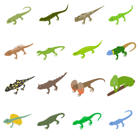 coldblooded: Lizard icons set in isometric 3d style on a white background