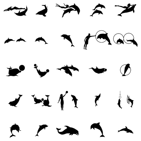 dolphinarium: Dolphinarium silhouette set in simple style on a white background