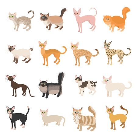 icônes de chat mis dans le style de bande dessinée sur un fond blanc