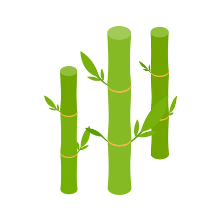 lucky bamboo: Green bamboo stems icon in isometric 3d style on a white background
