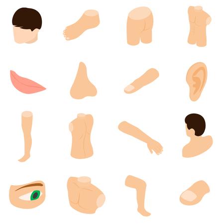 Lichaamsdelen pictogrammen in isometrische 3D-stijl op een witte achtergrond Stock Illustratie
