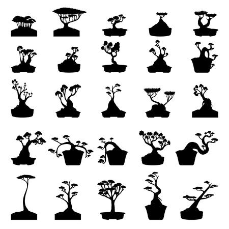 bonsai: Bonsai trees silhouettes set isolated on white background