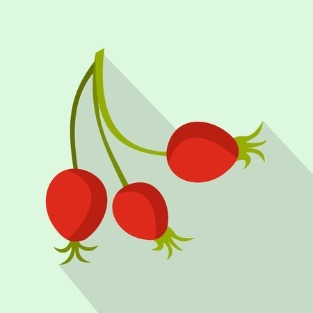 rosaceae: Briar fruits icon in flat style on a light blue background Illustration