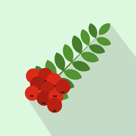 ashberry: Branch of of rowan icon in flat style on a light blue background