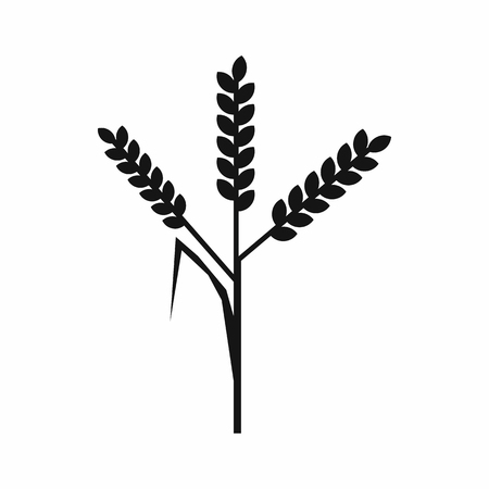 husks: Wheat ears icon in simple style on a white background Illustration