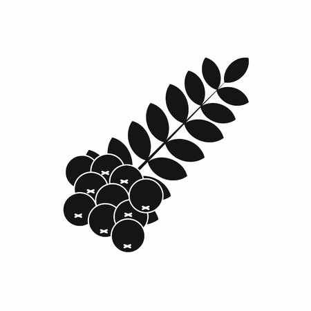 ashberry: Branch of of rowan icon in simple style on a white background