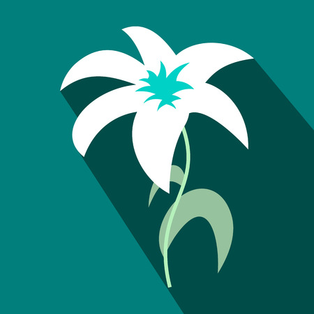 white lily: White lily icon in flat style on a blue background Illustration