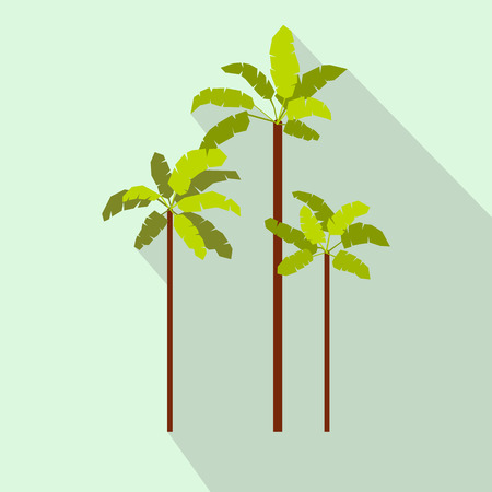 three palm trees: Three palm trees icon in flat style on a light blue background Illustration