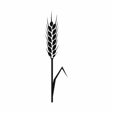 stalk: Rye ear icon in simple style on a white background