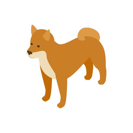 akita: Akita dog icon in isometric 3d style isolated on white background. Animals symbol