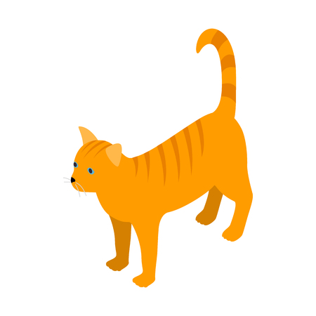 tabby cat: Orange tabby cat icon in isometric 3d style isolated on white background. Animals symbol Illustration