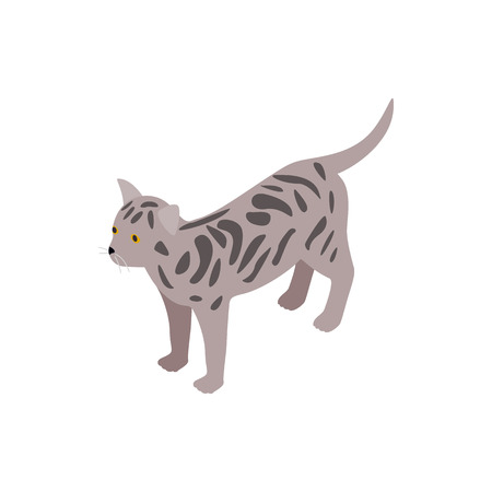 bengal: Bengal cat icon in isometric 3d style isolated on white background. Animals symbol Illustration