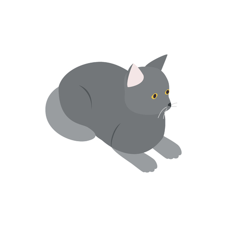 grey cat: Grey cat icon in isometric 3d style isolated on white background. Animals symbol