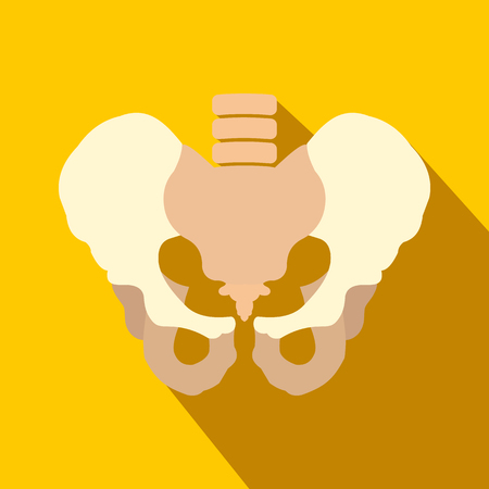 Human pelvis flat icon with shadow