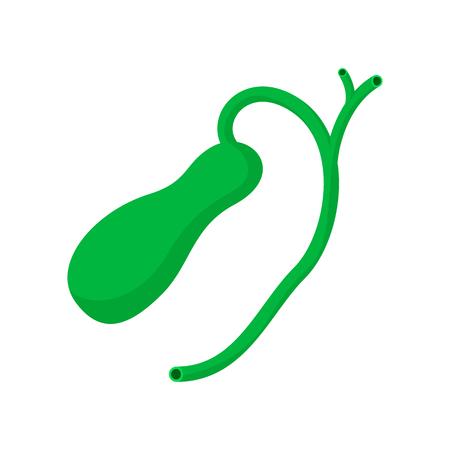 Human gallbladder cartoon icon