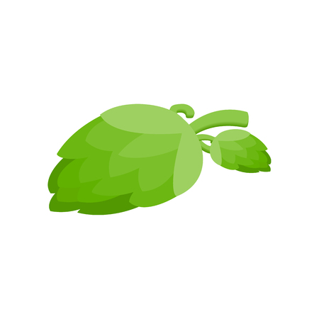 Branch of hops isometric 3d icon Archivio Fotografico