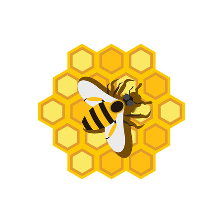 Honeycomb and bee flat icon isolated on white background Reklamní fotografie - 107565842
