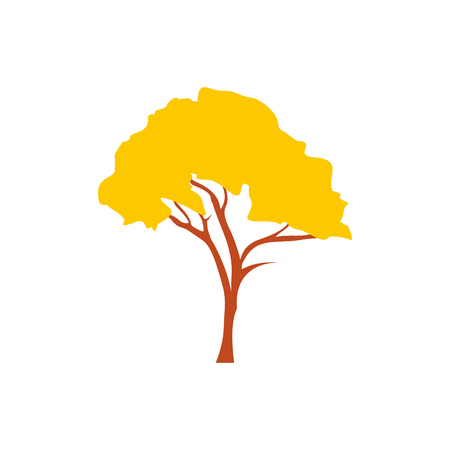 Tabebuia chrysotricha golden trumpet tree icon Banque d'images - 107743071