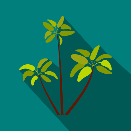 Three palm plant trees icon, flat style