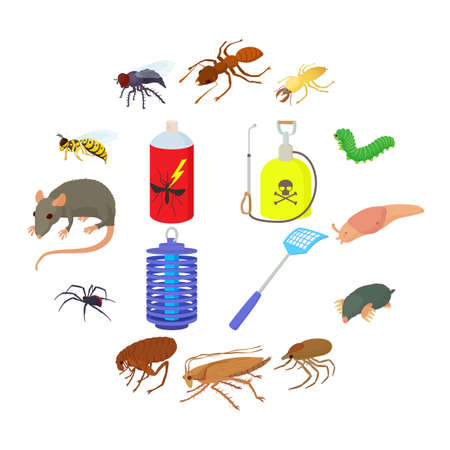 Insect icons set in cartoon style on a white background