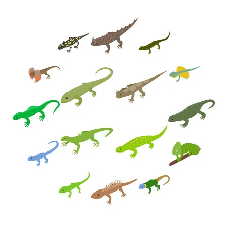 Lizard icons set in isometric 3d style on a white background