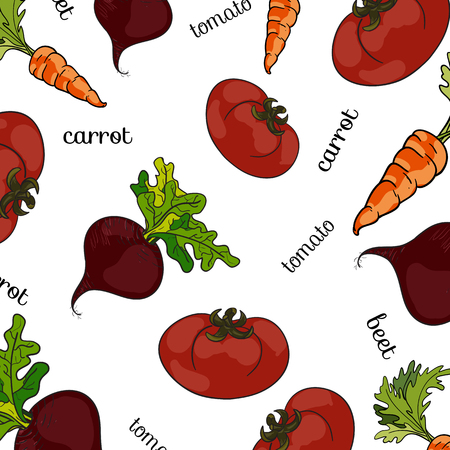 beets: Set of fresh vegetables, vector illustration, pattern names in vintage style. Tomatoes, beets, carrots
