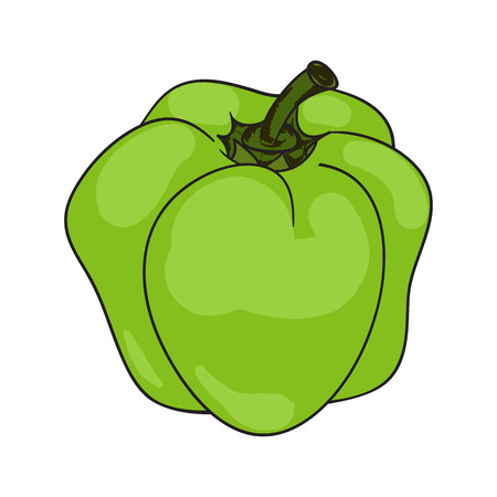 paprika: Colored paprika (pepper) cartoon isolated on a white background Illustration