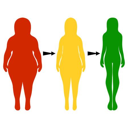 Sagome di donne spesse e sottili. Il concetto di un sano stile di vita e abitudini alimentari insalubri. Illustrazione vettoriale, disegnato a mano