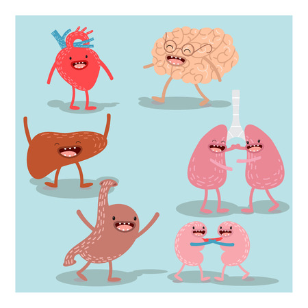 Cartoon human organs. Vector set. Healthy and strong cute liver, heart, brain, lungs, kidneys and stomach. Cartoon anatomy