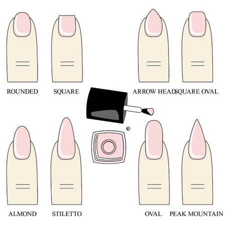 french manicure: Different forms, shapes  of nails. Manicure. Vector illustration. Icon