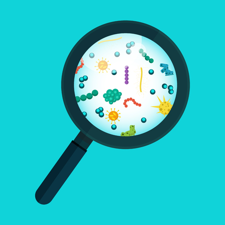 contamination: Germs under the microscope. Vector illustration Illustration