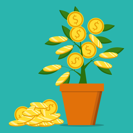 Money plant, the concept of earnings, success in work Vector illustration.