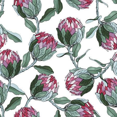 Protea Flowers hand drawn seamless pattern. Tropical floral vector illustration for fashion, fabric. Surface and textile print