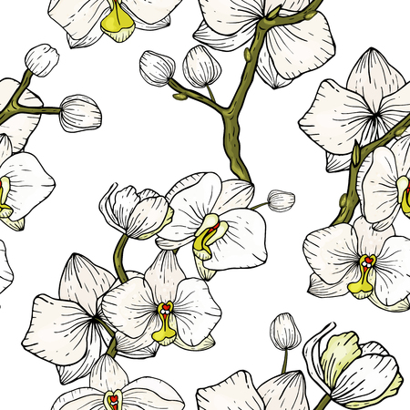 Blossom floral seamless pattern of orchid. Vintage background. Wallpaper. Blooming realistic isolated flowers. Hand drawn. Vector illustration.
