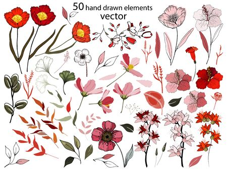 Decorative big hand drawn botanical set, nature isolated elements, red flowers, leaves. Greenery garden collection with foliage, branches, buds. Vector line painted illustration on white background